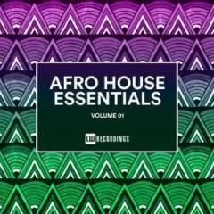 Da Q-Bic - African Souls (Original Mix)